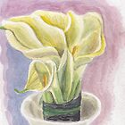 Calla by acquart
