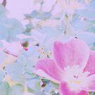 Blanket of Leaves by Lenore Senior