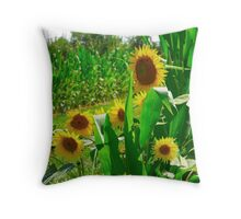 Sunflowers In The Cornfield Throw Pillow