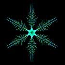 Blue-Green Diatom by Pam Blackstone