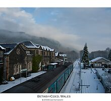 Betws-Y-Coed, Wales by Beverly Cash