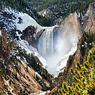 The Heart of Yellowstone II by Kay Kempton Raade