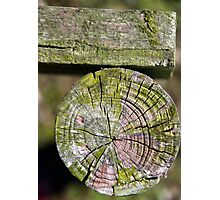 Wooden Roll Photographic Print