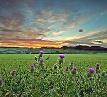 Scottish Sunset by Stuart Blance