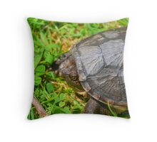 Young Snapping Turtle Throw Pillow
