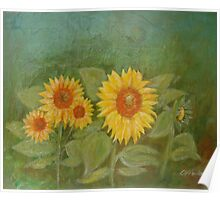 Sunflowers green Poster