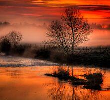 Eyebridge Mist 3 by banny