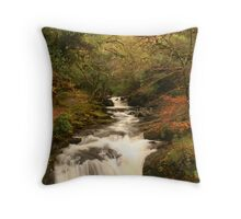 Forest of Killarney Throw Pillow