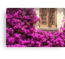 The Colour of Nature Canvas Print