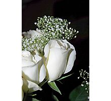 White Roses and Baby's Breath Photographic Print
