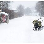 ...But Where's the Baby? :-) Mjódd (Iceland) by Madeleine Marx-Bentley