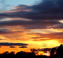 Fabulous colourful rich Sunset , Coniscliffe Grange, 9th May 2011,  by Ian Alex Blease