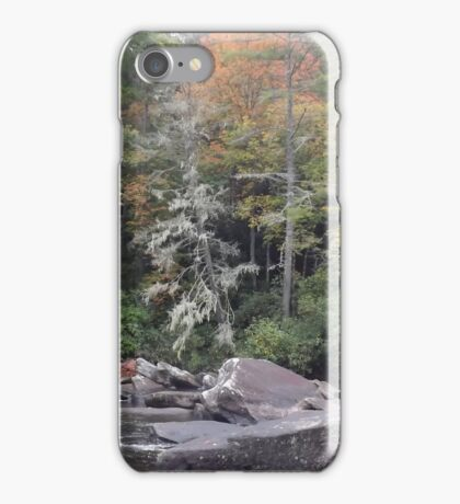 Touch of fall iPhone Case/Skin