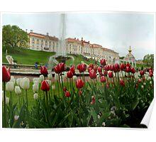 Petrodvorets castle Poster