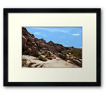 Yuca Valley desesrt  Framed Print
