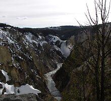 Lower Falls by Paul Simms