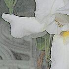 iris... II by dabadac