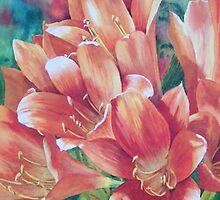 Orange Crush by Fiona  Lee