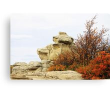 Autumn at Writing-on-Stone Canvas Print