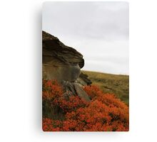 Autumn on Writing-on-Stone Canvas Print