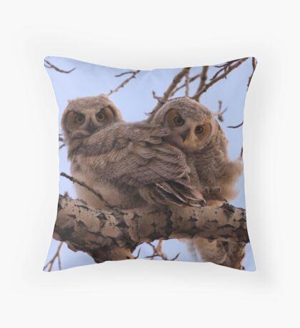 Curious Owlets Throw Pillow