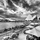 Sydney Harbour, Opera House and Bridge by Julian Fulton-Boote