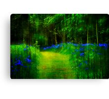 Down in Bluebell Wood Canvas Print