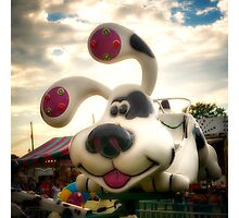 Doggy Carnival Ride Photographic Print