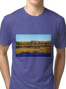 Fall Marsh Tri-blend T-Shirt