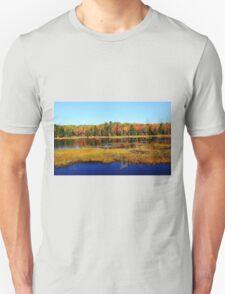 Fall Marsh T-Shirt