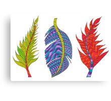 Colours / Colors of Seasons Canvas Print