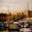 Stanley Park Harbour by Rae Tucker