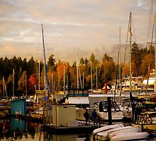 Stanley Park Harbour by Rae Tucker