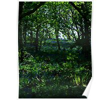 ~ Blue bell woods Poster