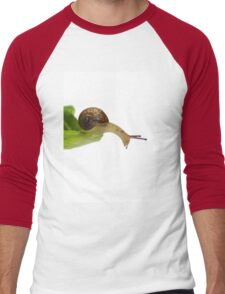 Baby Snail Men's Baseball ¾ T-Shirt