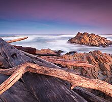Arthur River (iii), Tasmania, Australia by Matthew Stewart