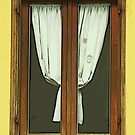 Window in Rome by gluca