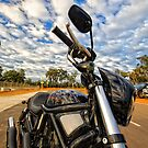 The HARLEY DAVIDSON  Night Rod Special - Bluewaters Power Station Collie by Chris Paddick