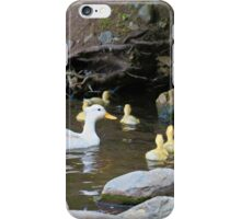 Momma Duck and Ducklings iPhone Case/Skin