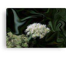 Natural Abstract White Canvas Print