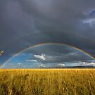 African Rainbow by Rob  Southey