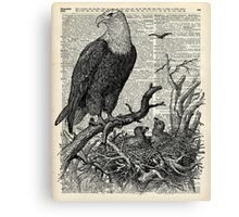 Eagles in Nest,Pen and Ink Drawing,Vintage Dictionary Book Page Art Canvas Print