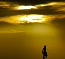 The silhouette  by paul levy
