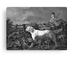 Setter Dog Illustration Canvas Print