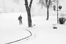 Snow Storm by Bjarte Edvardsen