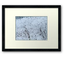 Snowy Weight Framed Print