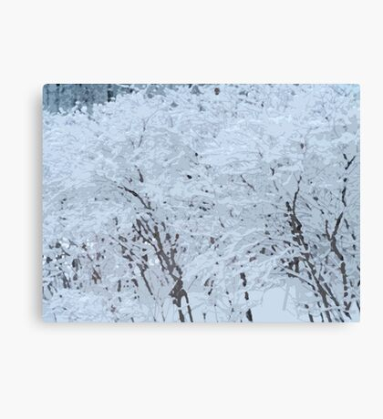 Snowy Weight Canvas Print