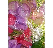 red and purple flowers, wet Photographic Print