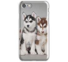 Husky iPhone Case/Skin