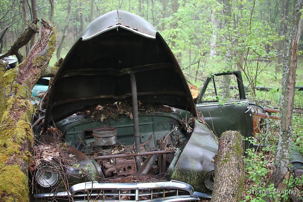 November Old Motor Car by Thomas Murphy